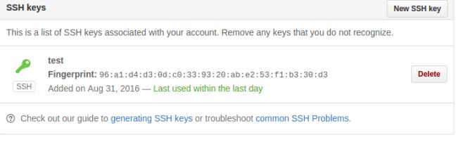 github ssh successfully