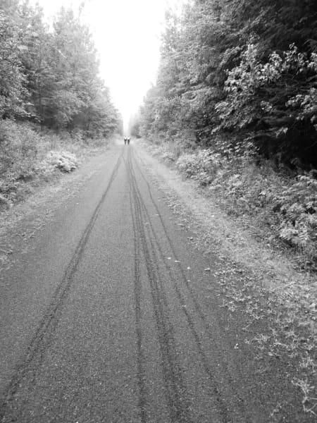 Route Verte tracks
