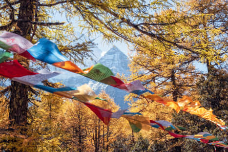 The Road To Shangri-La: A Cycling Quest For The Fabled Tibetan Kingdom