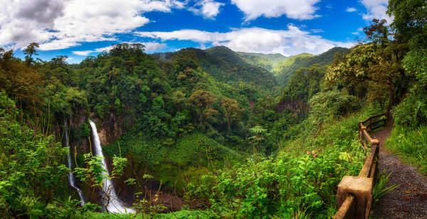 Pura Vida - The Best Of Costa Rica