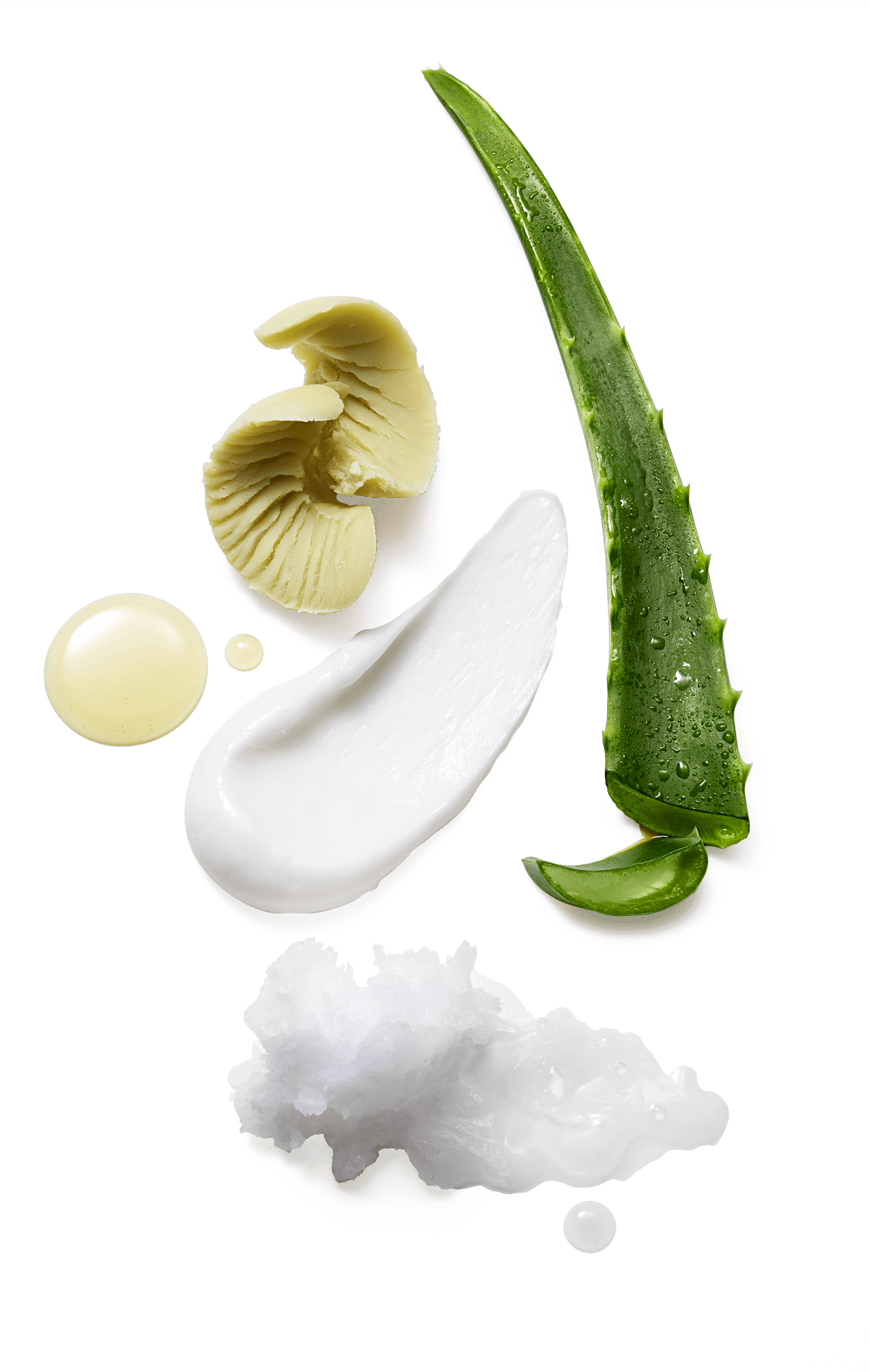 raw ingredients