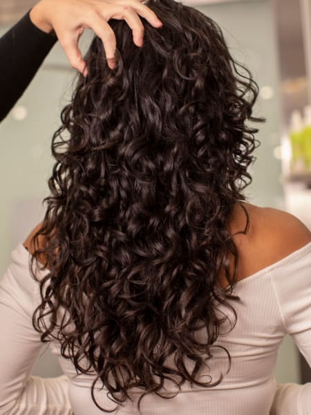 back of head shot showcasing curls