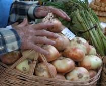 Vegetables tajikistan