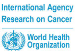 International%2520agency%2520for%2520research%2520on%2520cancer