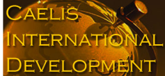 Caelis%2520international
