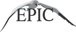 Epic%2520logo%2520vectorized%2520no%2520background%2520copy