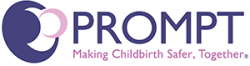 Prompt logo 17092014