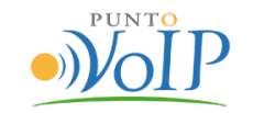 Puntovoip color fondoblanco300x300 300x123