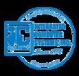 Ics logo website