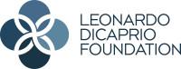 Ldf big logo