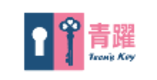 Teenskey logo