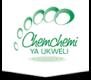 Cyu logo