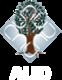 Ambedkar%2520university