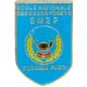 Logo enef vf 1