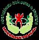 Dci logo transparent