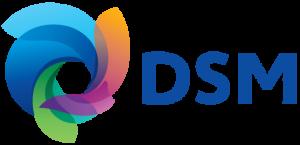 Dsm simplifiedlogo