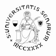 Logo unisi 2012