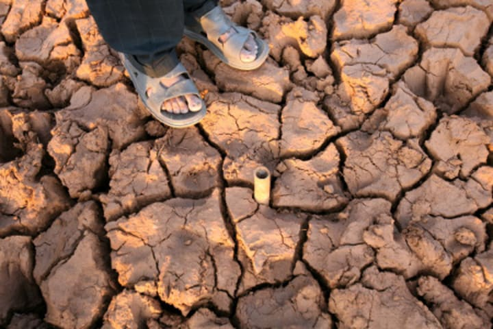 International NGOs Appeal for Emergency Aid for Drought-hit