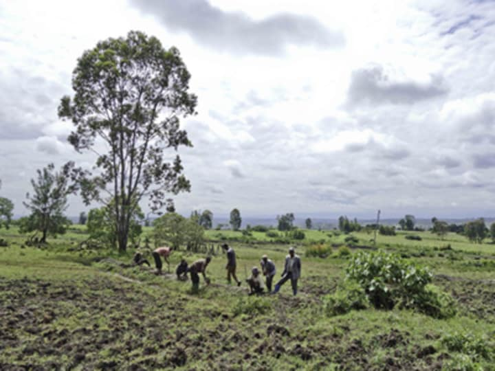 How to use land sustainably