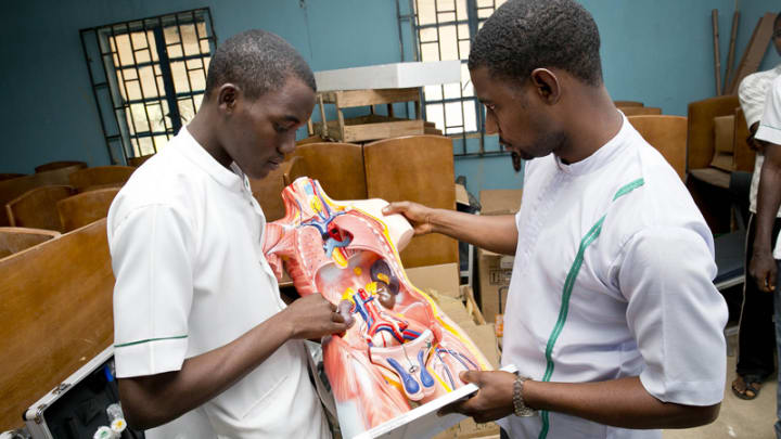 Building the business case for health sector strengthening