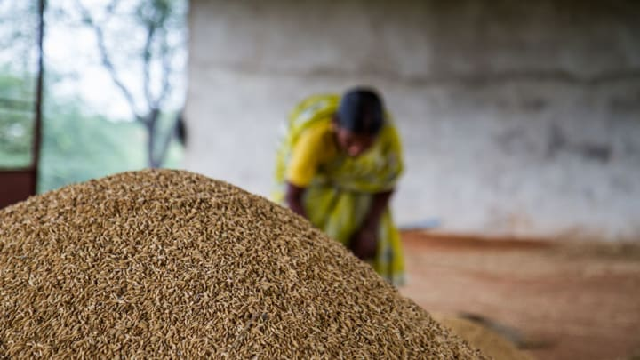 Global Food Security Insights From Usda Projections Devex