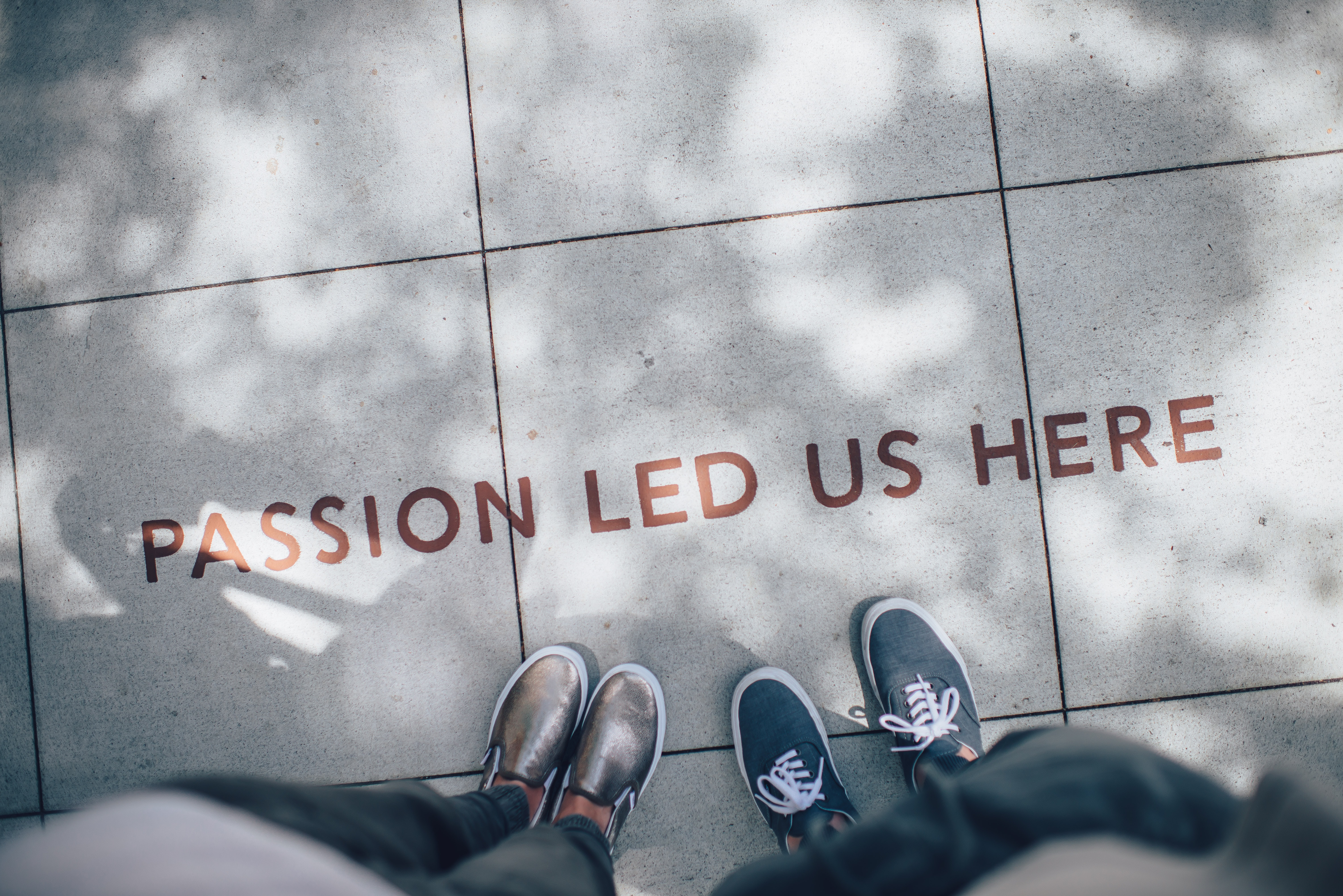 passion_led_us_here