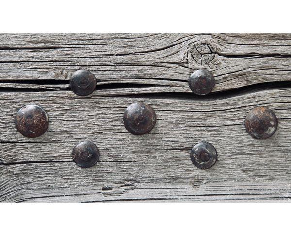 "Rustica Clavos Decorative Nail 3/4"" Diameter"