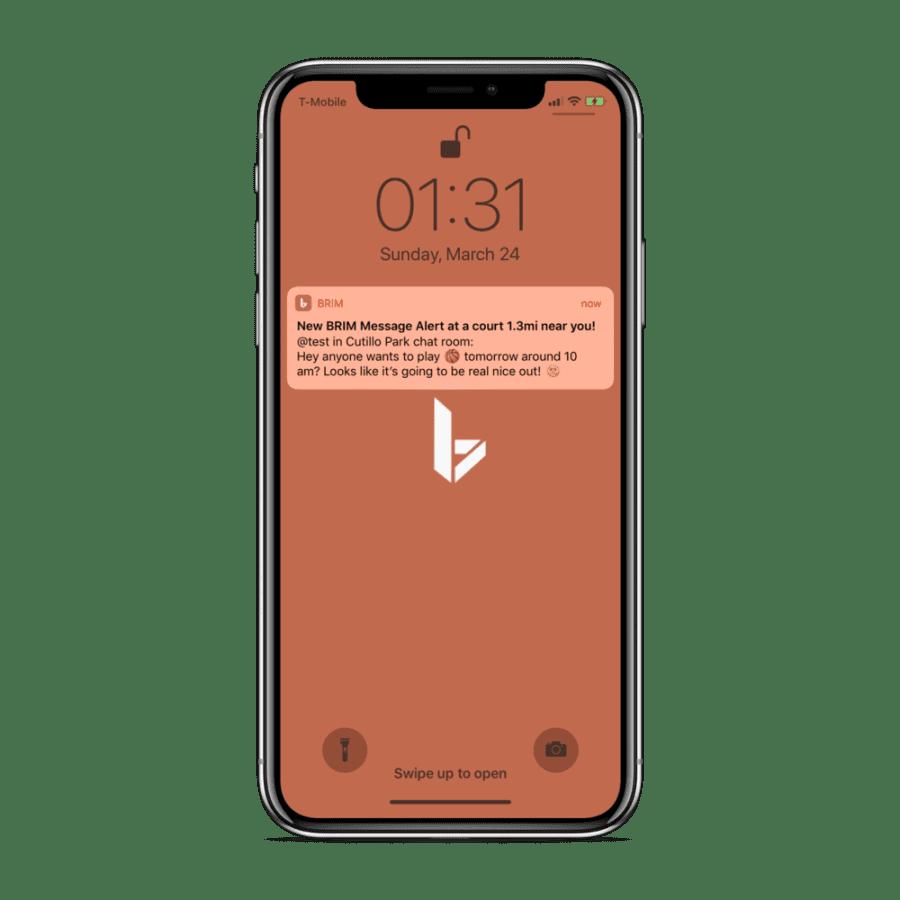 BRIM Basketball mobile app push notification