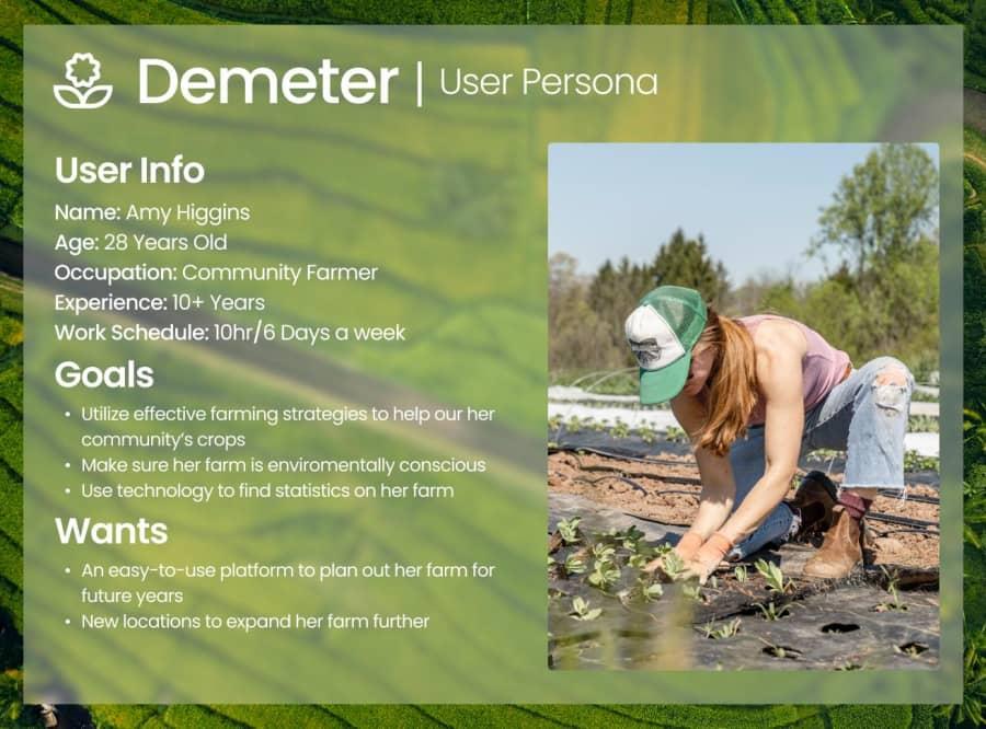 User Persona