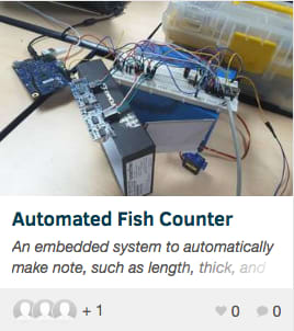 Automated Fish Counter