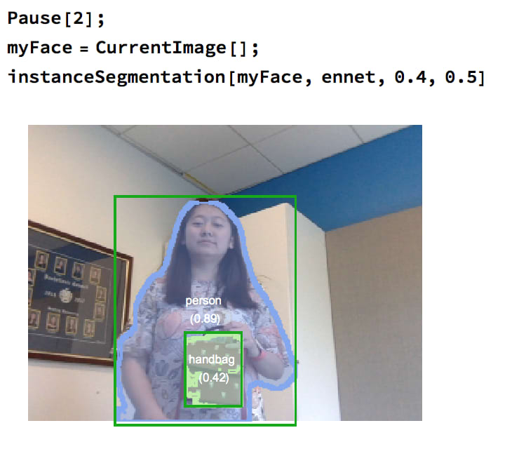 Instance Segmentation with Mathematica | Devpost