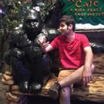 Sam Pisheh's avatar