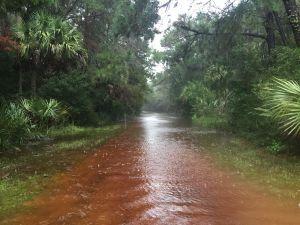 Flood Update