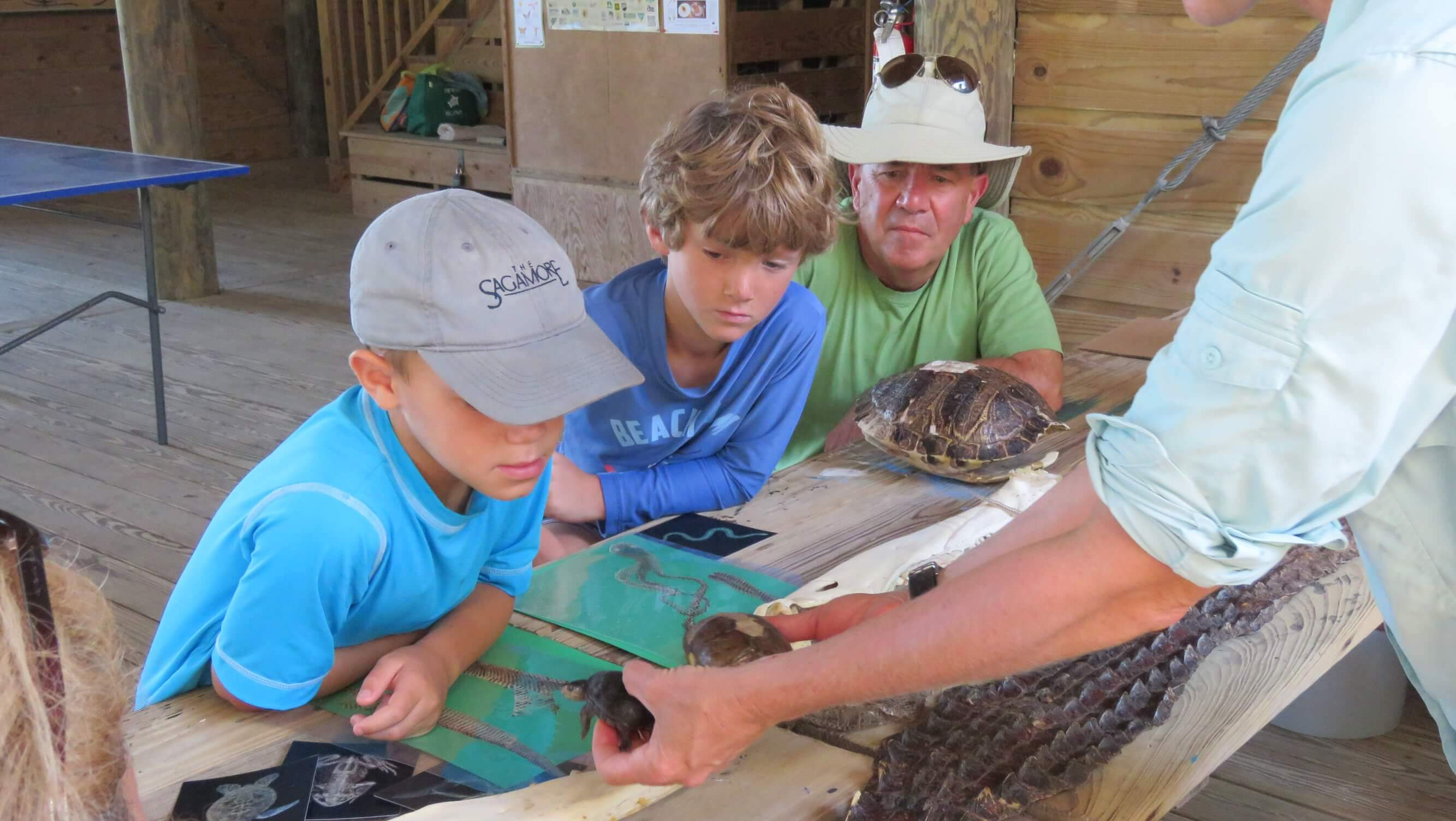 July Program Schedule for Dewees Island