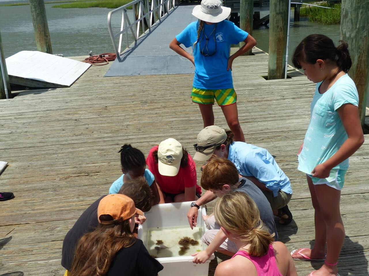 Summer Nature Programs: Reserve your Spot