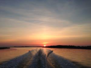 Evening Waterway Safari