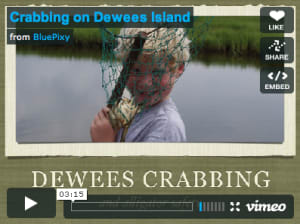 Click Image to Watch Dewees Island Crabbing Video