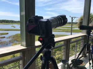 Read more about the article National Geographic Photographer to lead Photo Workshop on Dewees Island