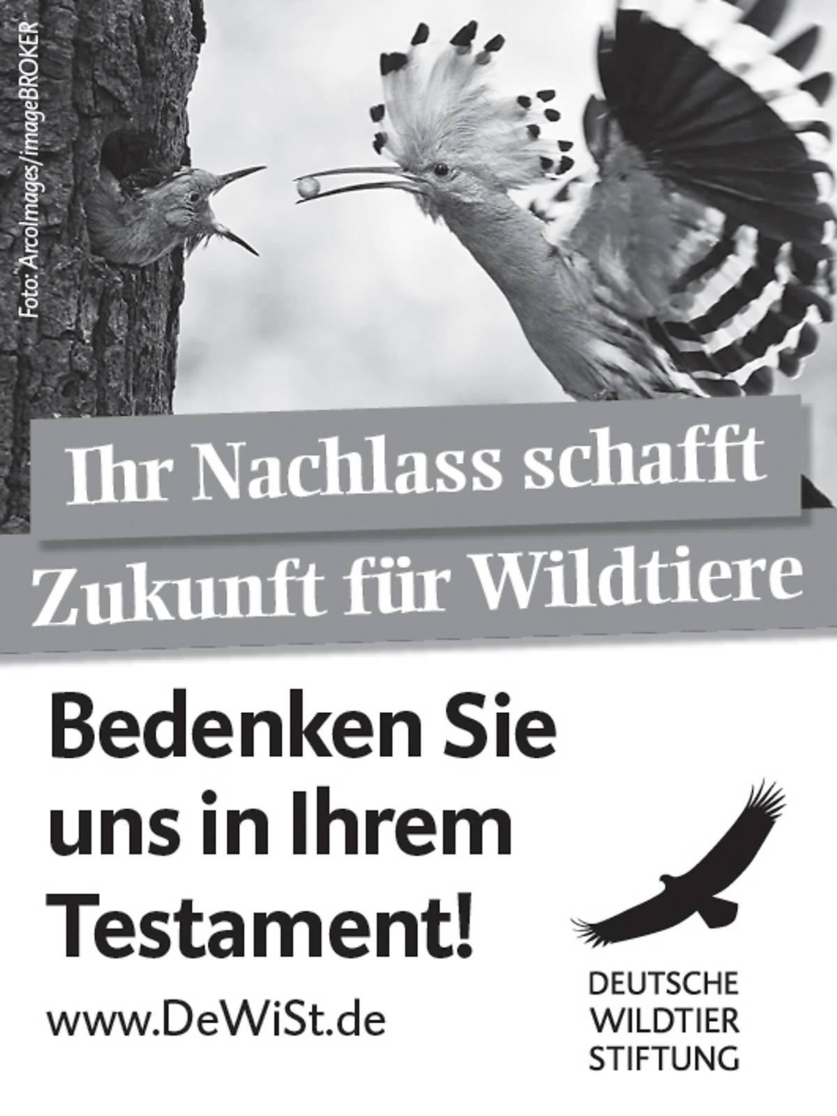 45x60_testamentsspende_sw