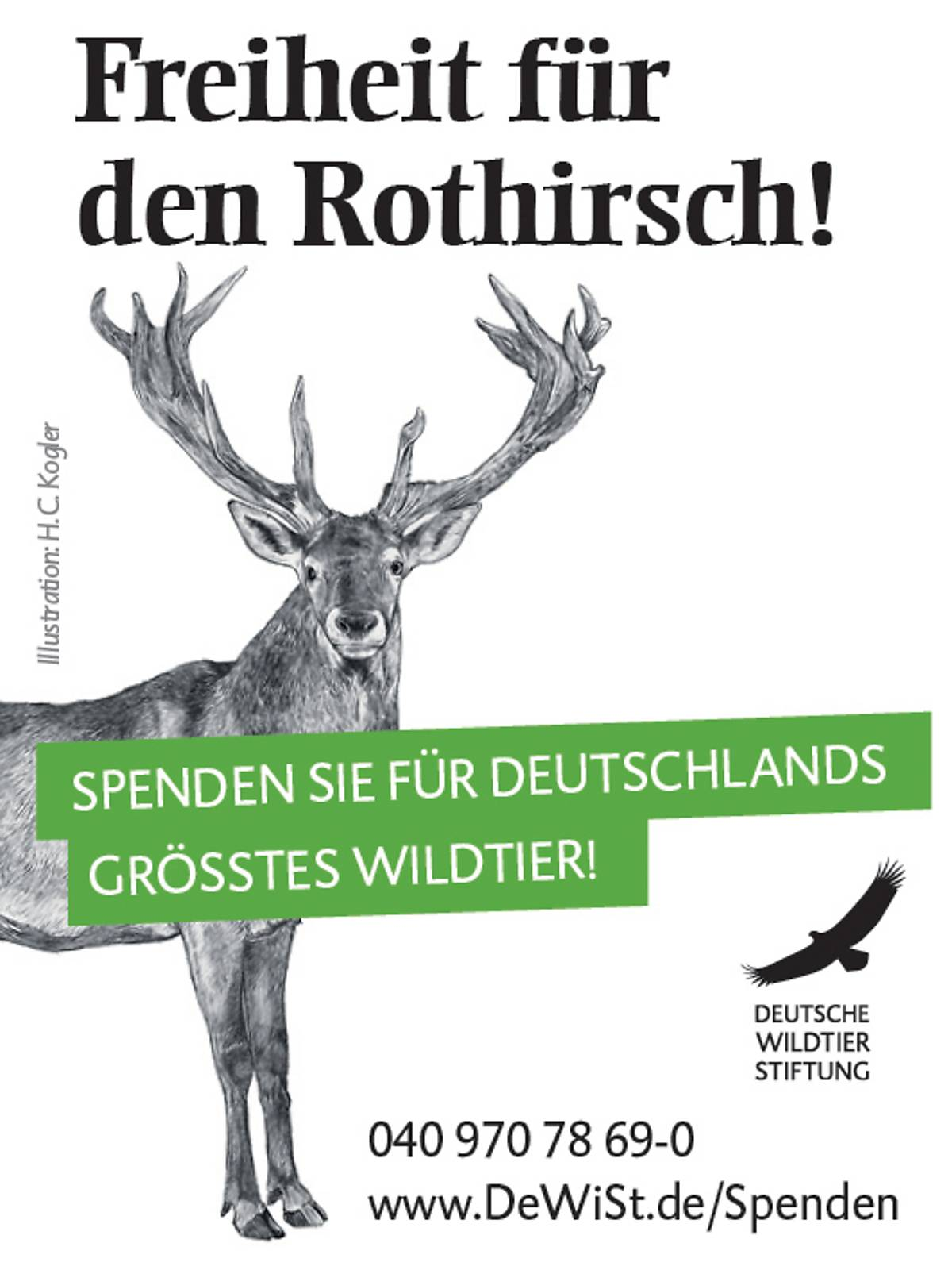 45x60_schutzprojekt-rothirsch