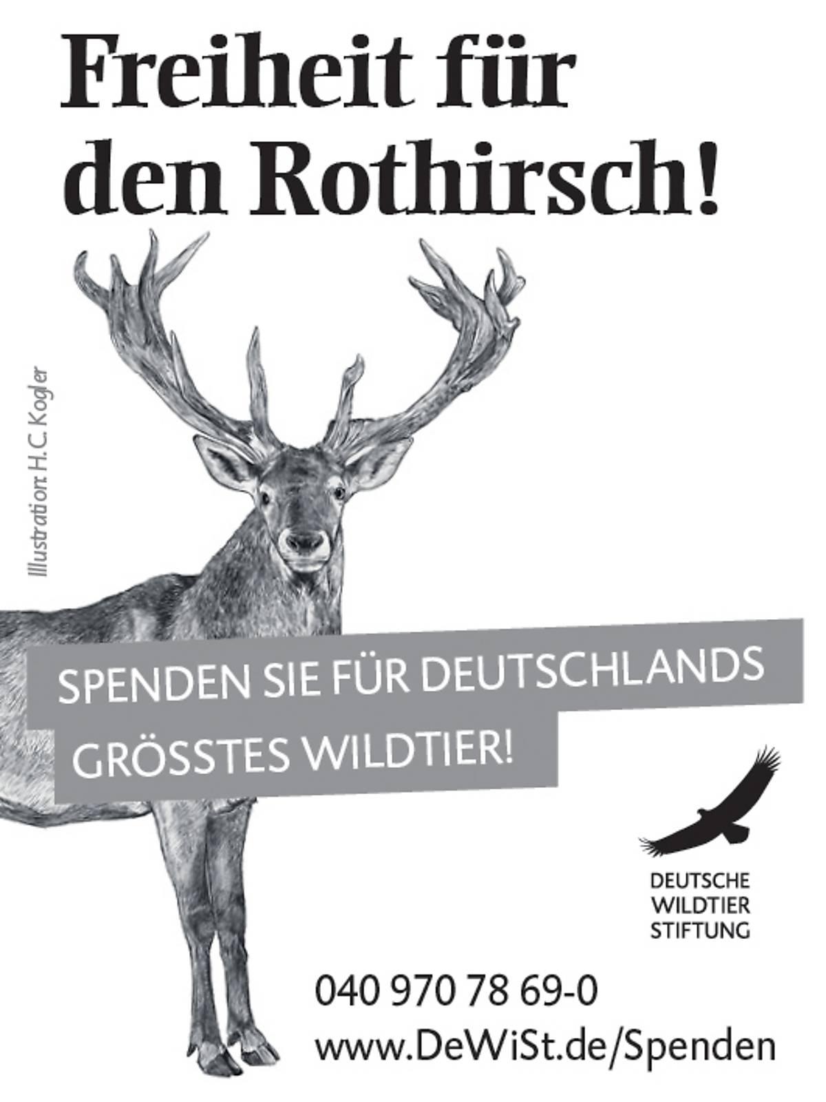 45x60_schutzprojekt-rothirsch_sw