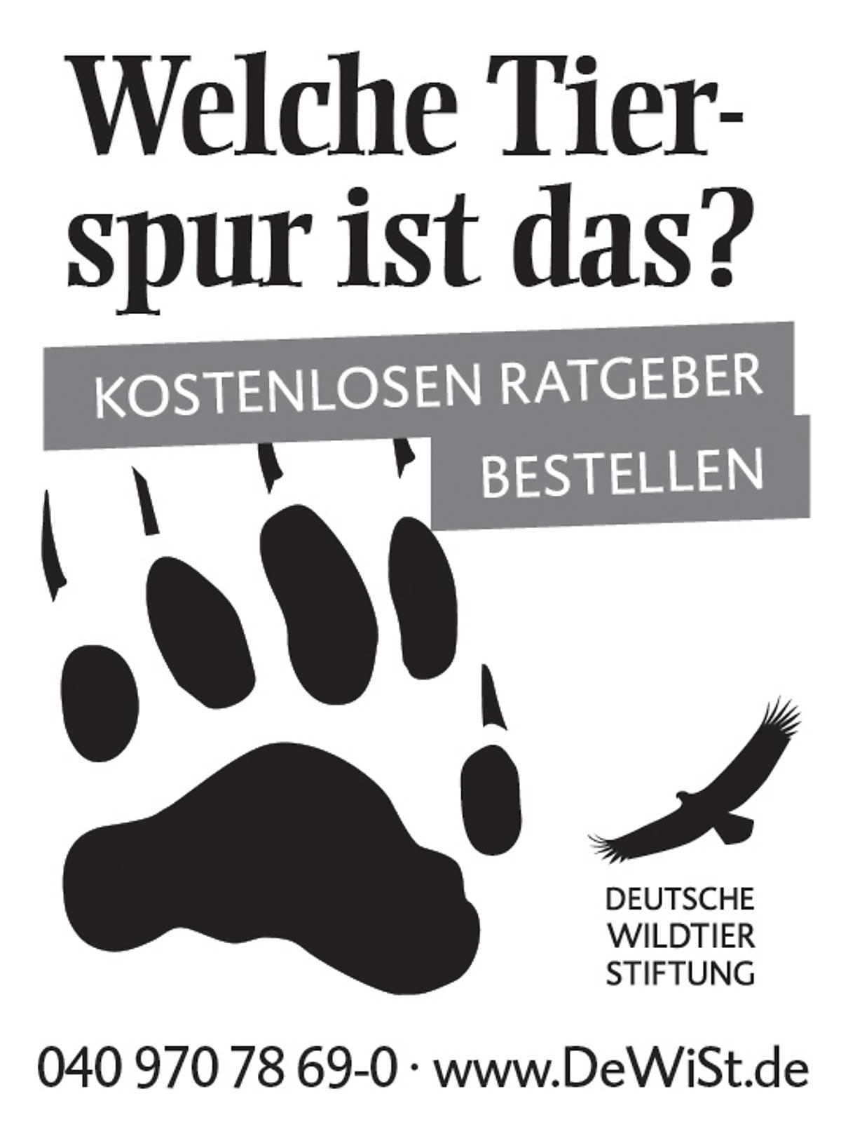 45x60_ratgeber-faehrten-und-spuren_sw