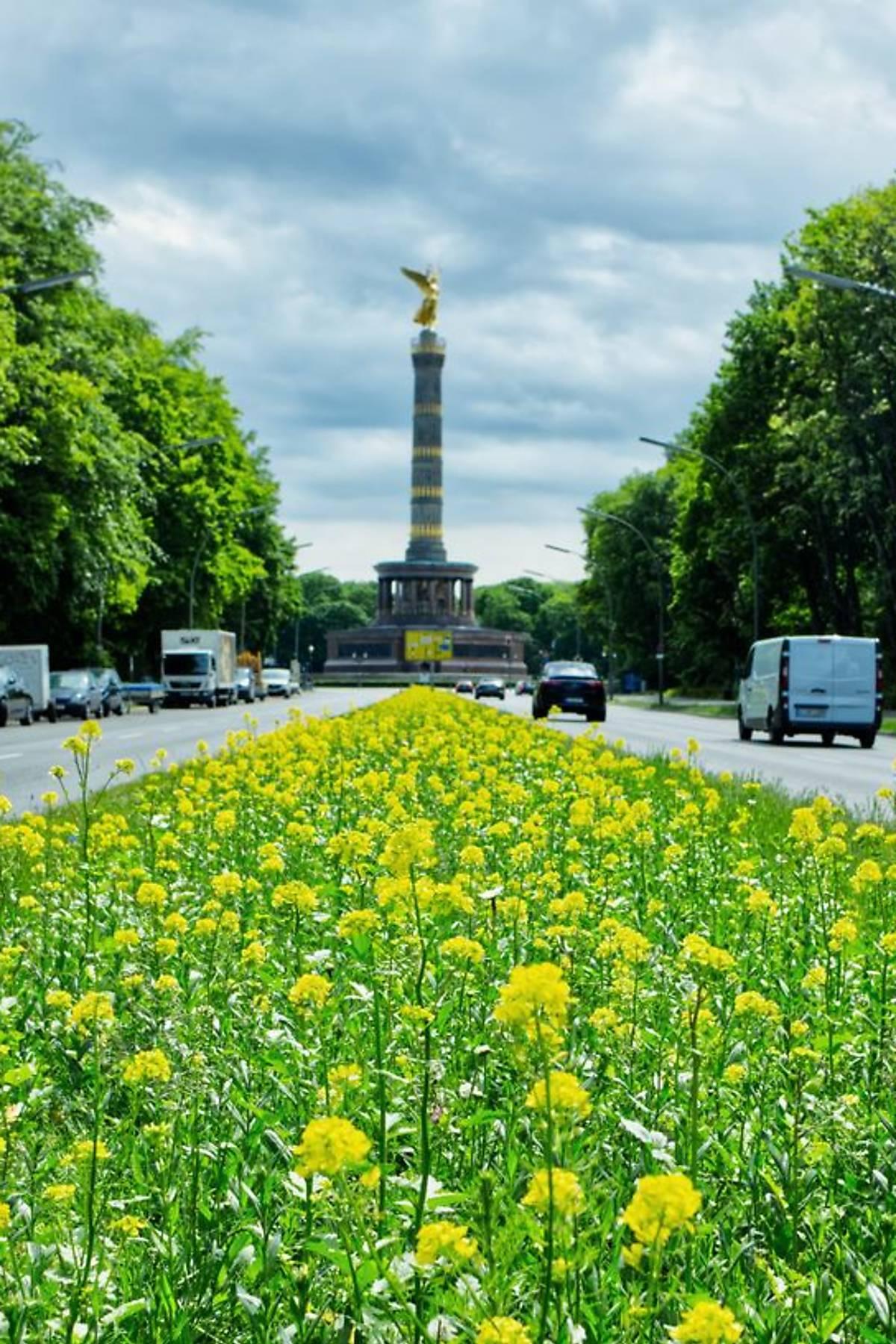 berlin-wildbienenseite