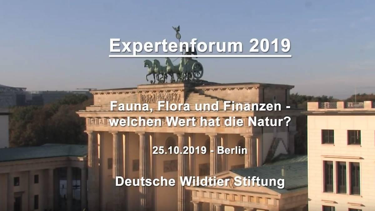 expertenforum-2019
