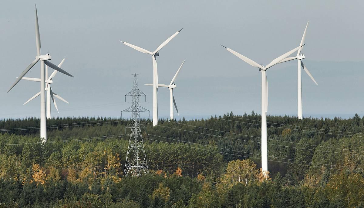 Windräder im Lebensraum Wald