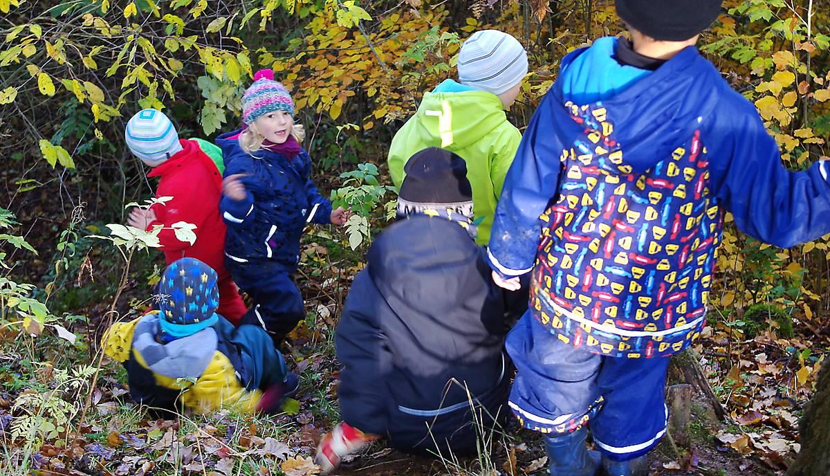 Kinder im Waldkindergarten spielen in der Natur