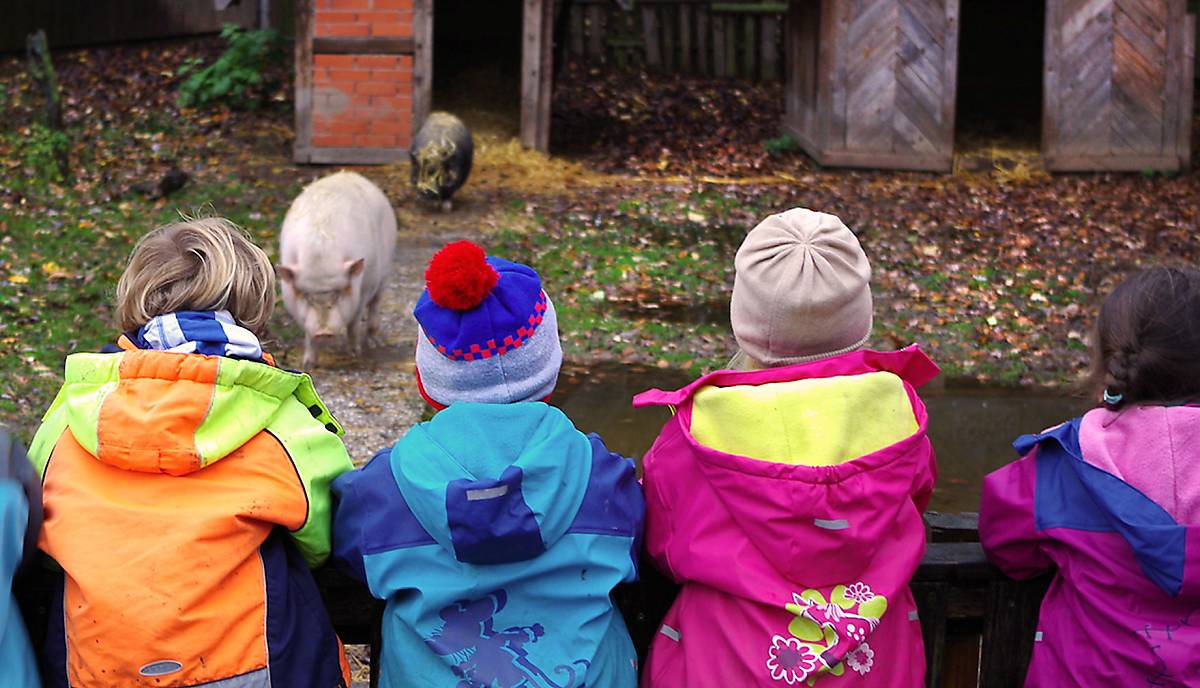 Die Kinder des Farmkindergarten Obervieland e.V.