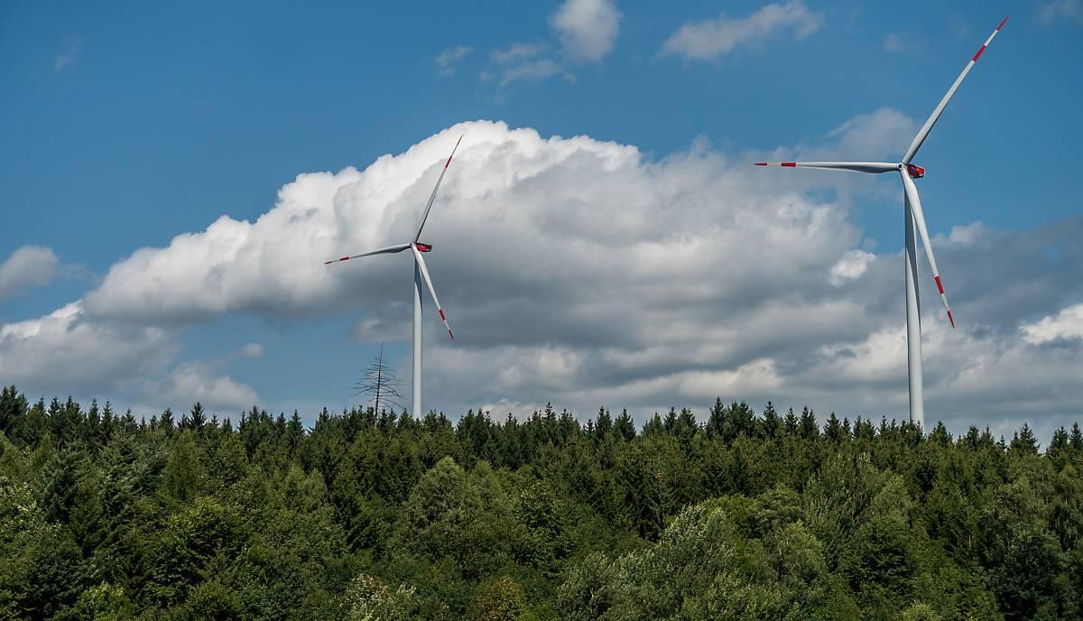 windenergie-fullscreen-wald