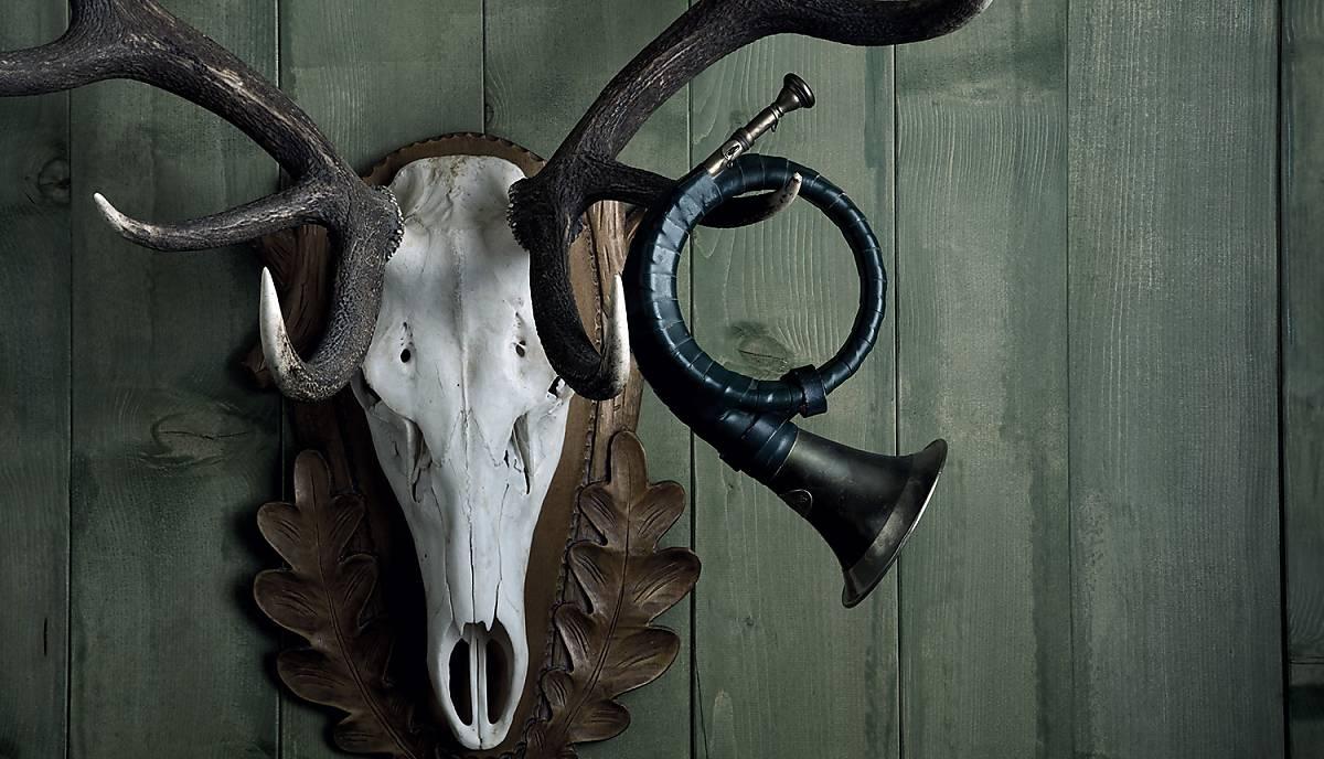Mit Ihrer Spende unterstützen Sie uns dabei, unsere Forderungen für eine wildtiergerechte Jagd durchzusetzen.