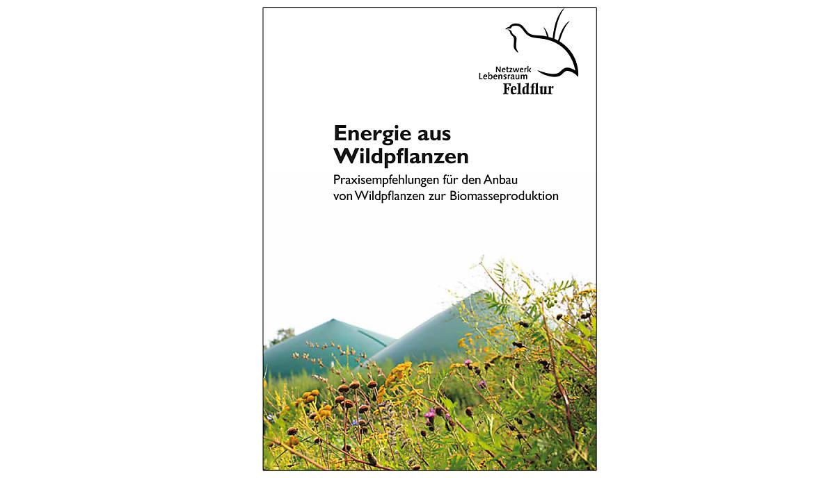 cover-ratgeber_energie-aus-wildpflanzen_2019